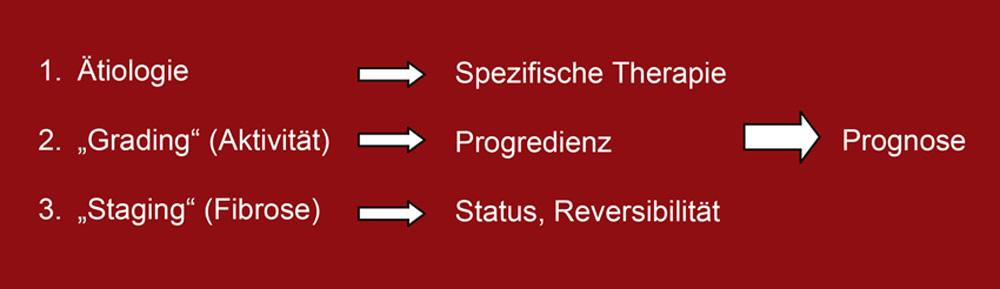 Die drei Ebenen der Diagnostik
